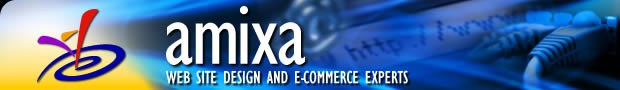 Amixa Website Designers Pittsburgh, PA
